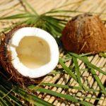 beneficios del aceite de coco, propiedades del aceite de coco