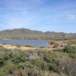 La Playa de las Cañas de Calblanque